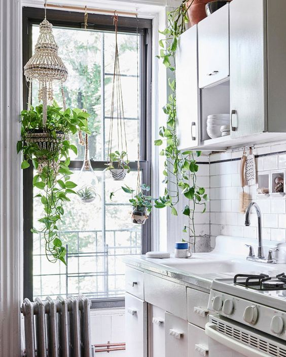Kitchen With Greenery