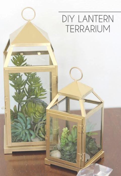 lantern-terrarium-tutorial