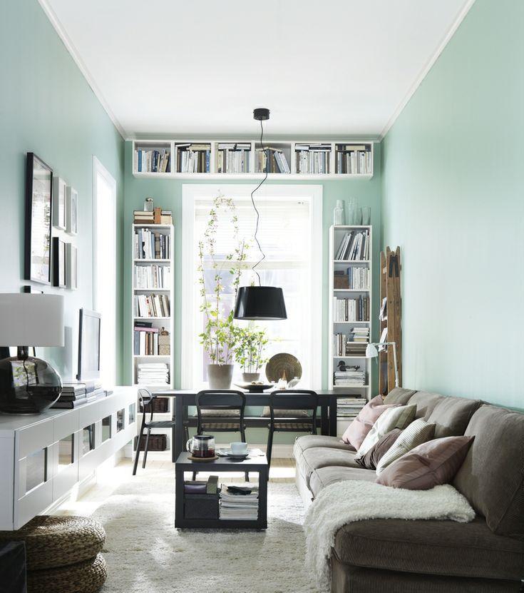 long-living-room-with-bookshelf